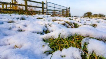 'Farmers should not be penalised if slurry tanks flood with snow'