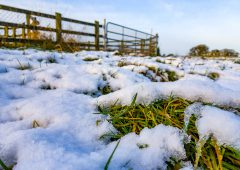 Status Orange snow and ice warning issued