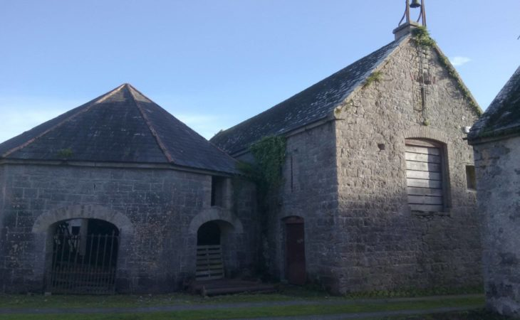 Hardwood, hops and history: Farm behind Ballykilcavan Brewery hosts tour