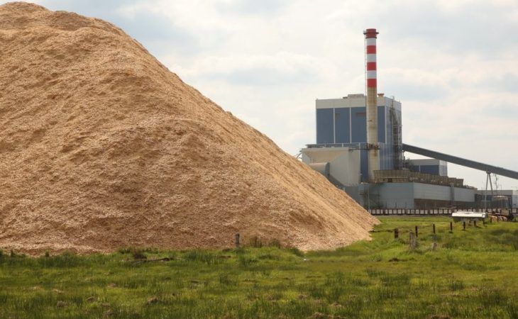 All 3 midlands power stations to burn biomass by 2020