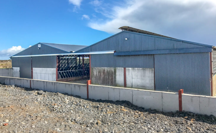 Buildings focus: A simple beef unit makes life easier in Co. Tipperary