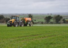 Tillage management: Early control of disease on wheat