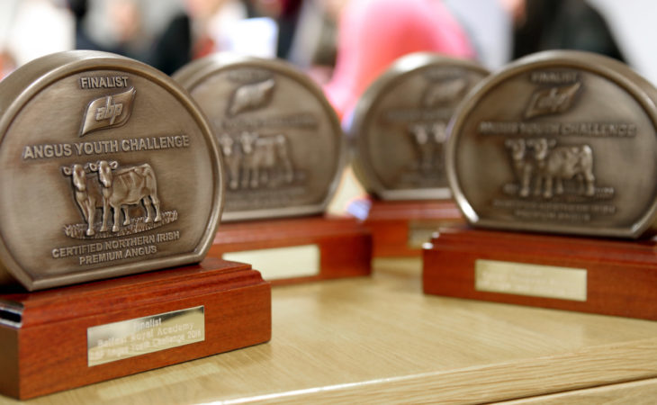 School finalists announced for first Northern Angus Challenge
