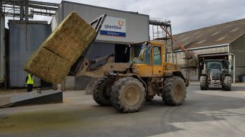 Glanbia imports alfalfa to assist drought-stricken suppliers