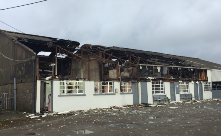 Carrick-on-Suir mart 'out of action' until further notice