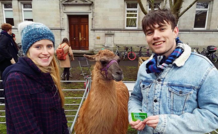Trinity College's new agricultural society is like 'no udder'