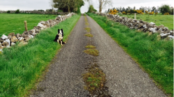 400 private roads to be upgraded with €10 million improvement allocation