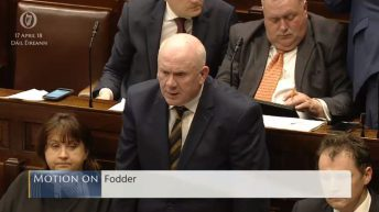 Fianna Fail's fodder motion passed in the Dail