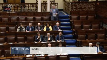 Fianna Fail's fodder crisis motion to be put to a vote