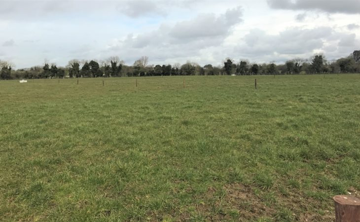 '20% more grass can be produced by correct management'