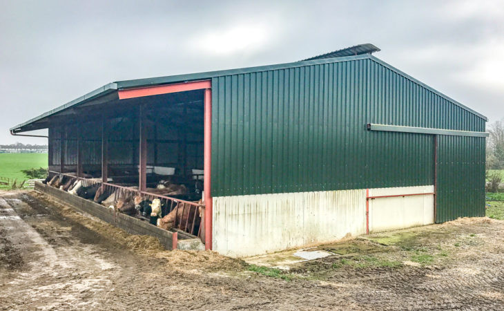 Buildings focus: A self-erected beef unit constructed without TAMS in Co. Kilkenny