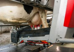 First look: New Lely Astronaut makes debut at 'Ploughing 18'
