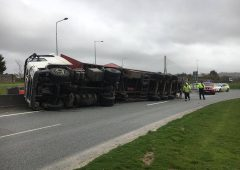 Overturned lorry scatters chickens onto motorway