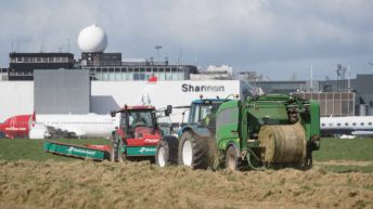 Silage operation at Shannon Airport bears over 1,250 bales