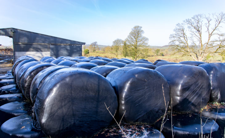 Poll: How much are you paying for silage?