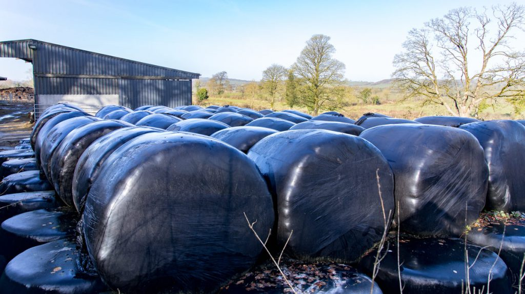 silage, bale, prices, demand, supplyFianna Fail, bank of Ireland, weather, fodder hardship fund committee nutritional value