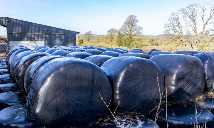 Silage sees 31% price surge in 2018 – DoneDeal