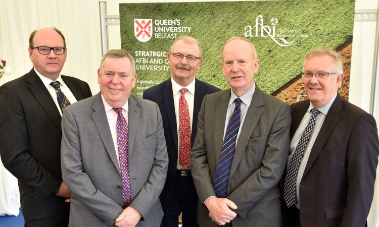 'Globally competitive' NI strategic alliance launched