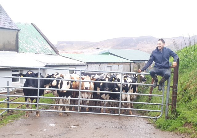 Kerry farm family poised to set 5 Guinness World Records