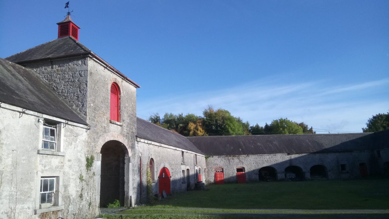 Laois farm to feature on RTE's 'A Wild Irish Year'