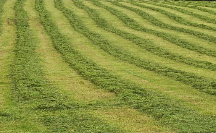 Reducing the risk of silage losses