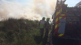 Firefighters battle gorse fires across the country this week