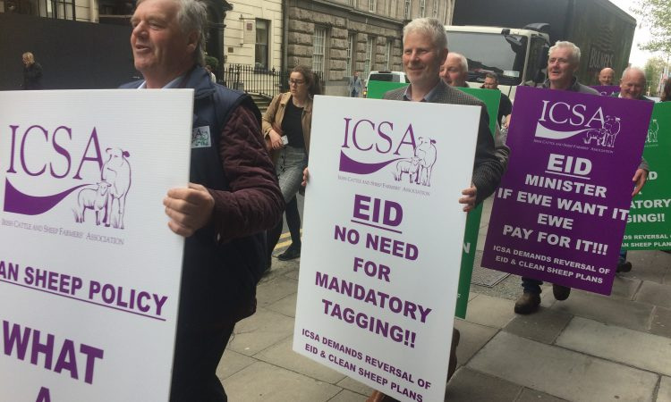 ICSA warns Creed to 'go back to drawing board' on EID tagging