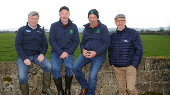 Diary date: What's on the agenda at the IGA sheep conference?