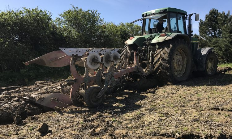 Tillage focus: Still sowing spring crops in south Wexford