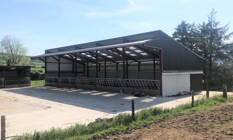 Buildings focus: A 5-bay slatted unit and a new silage slab in Co. Tipperary