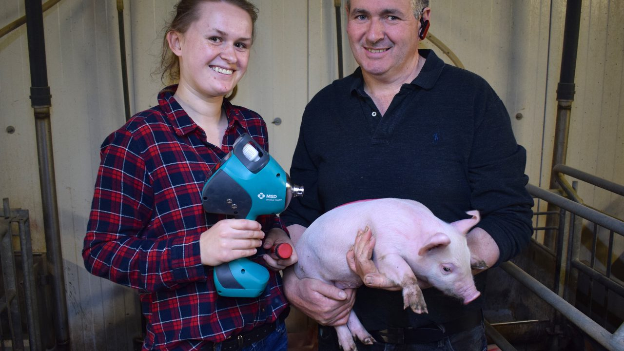 High-tech, low-labour vaccination on a farrow-to-finish unit