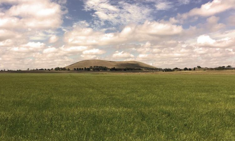 600ha Oz farm sells for a reported $200 million