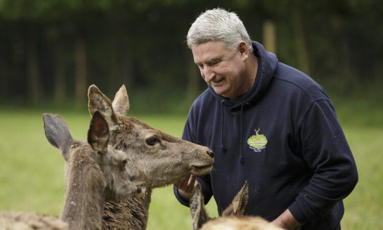 Cork farmer responds to 'worst winter' with mindfulness garden