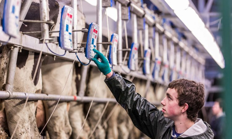 Irish milk production falls by nearly 6% in April
