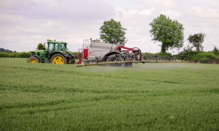 Spring barley: Uncontrolled diseases could decrease yields by 25-40%