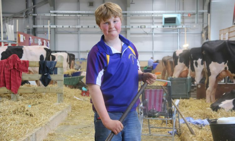 Farm boy's inspirational shave gets Balmoral breeders digging deep