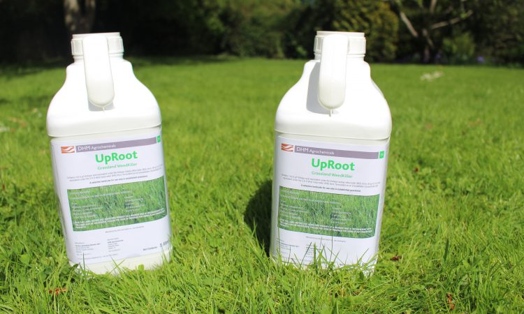 New grassland weedkiller hits the market