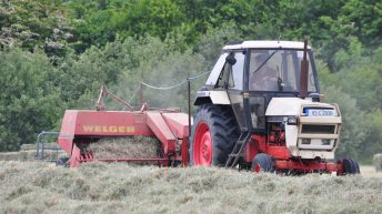 Pressure mounts on Creed to allow farmers to cut THMs