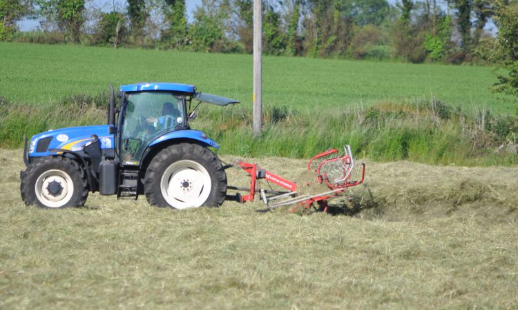 Dry weather slowing grass growth; some spring crops struggling