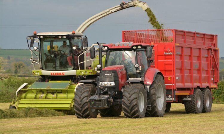 Opinion: Support the real 'job-rich' economy – Irish farming rather than 'big pharma'
