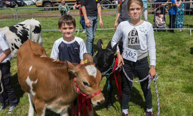 Artisan food producers to be lauded at Clonmel Show