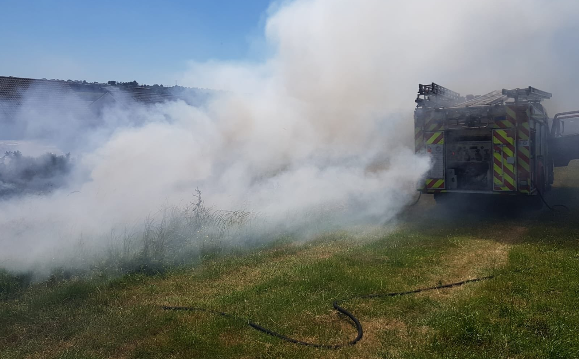 Department issues warning on illegal burning and hedge-cutting
