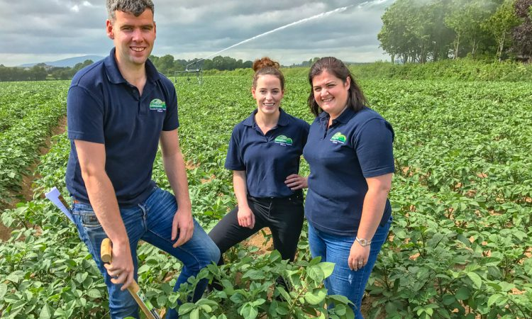 Tillage focus: 28,000t of potatoes from a family farm in Co. Kilkenny