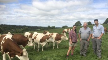 From a make-up career to dairy farming with dad