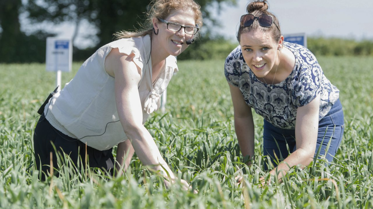 Department open day highlights top standards of Irish crops and seed