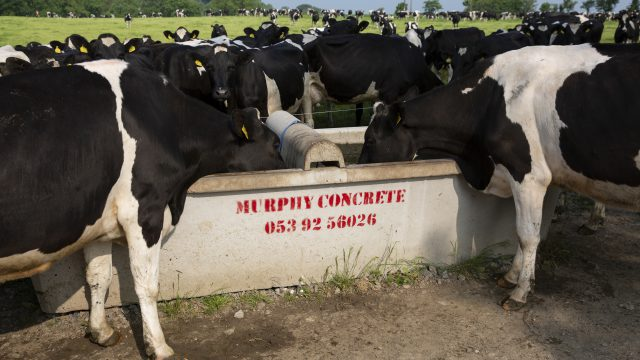 Water consumption on farms increases as temperatures soar