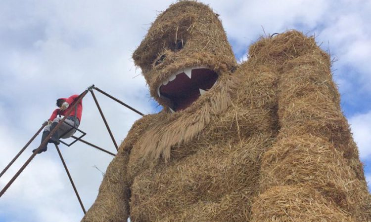 Spectacular scarecrows set for festival fever in Laois