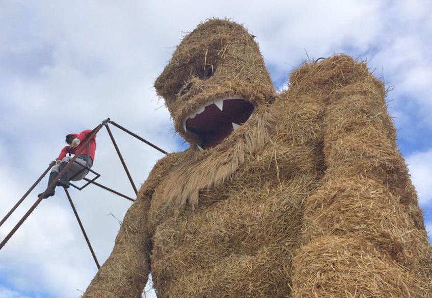 spectacular scarecrows set for festival fever in laois agriland ie