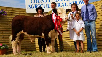 Pics: Strong turnout of Herefords at Longford Show