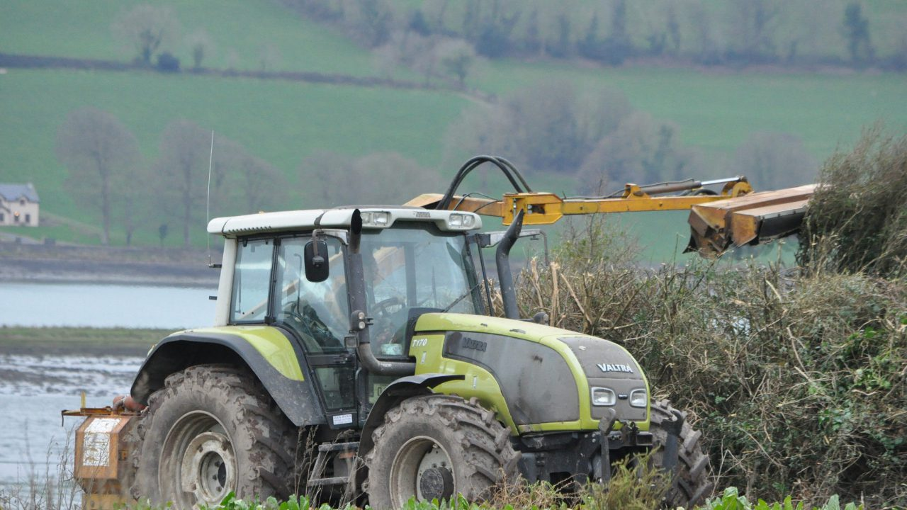 Kildare farmer ordered to pay €2,500 for illegal hedge-cutting